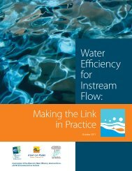 Project Report Summary - Alliance for Water Efficiency