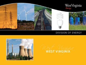 Energy Efficiency Efforts at the State of West Virginia