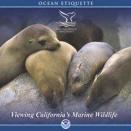 California Wildlife Viewing Report - National Marine Sanctuaries ...