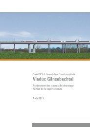 Viaduc Gänsebachtal - SSF Ingenieure