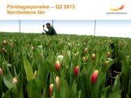 Företagarpanelen Norrbottens län kvartal 2 2013