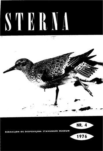 Sterna, bind 15 nr 4 (PDF-fil) - Museum Stavanger
