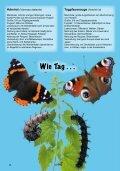 Schmetterlinge - Österreichische Naturschutzjugend - Seite 6
