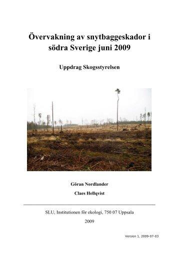 Övervakning av snytbaggeskador i södra Sverige juni 2009 - SLU