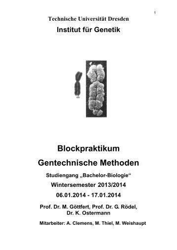 Blockpraktikum Gentechnische Methoden - Technische Universität ...