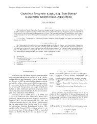Guanobius borneensis n. gen., n. sp. from Borneo - Staatliches ...