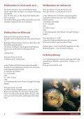 Schlosswirtpost - Schlosswirt Kornberg - Seite 6