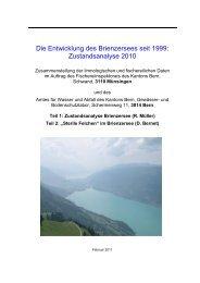 Die Entwicklung des Brienzersees seit 1999 ... - Kanton Bern