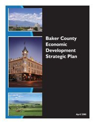 Baker County Economic Development Strategic Plan - Scholars
