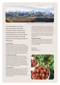 fillings, toppings & sauces - Barkersfruit.biz - Page 2