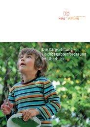 Karg-Stiftung . Hochbegabtenförderung im Überblick