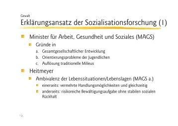 Ansatz der Sozialisations- forschung (Heitmeyer) - Ploecher.de