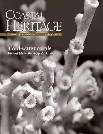 Cold-water corals - SC Sea Grant Consortium
