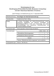 Modulkatalog für den Studiengang Wirtschaftsinformatik (Business ...