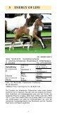 Auktionsfohlen Katalog (pdf) - Trakehner Verband - Seite 7