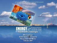Energy and Water Issues and Challenges - Texas Renewable ...