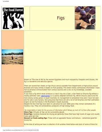fig factSheet - Figs 4 Fun