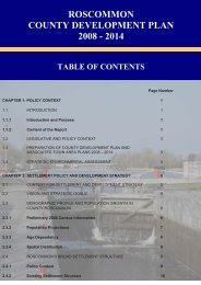 Table of Contents - Roscommon County Council