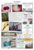 Der Bierstaedter Februar 2014 - Seite 7