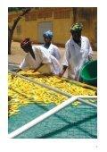Hacia Un Impacto Triple - UNDP-UNEP Poverty-Environment Initiative - Page 7
