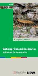 Eichenprozessionsspinner - Ministerium für Klimaschutz, Umwelt ...