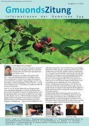 Zeitung 3/2013.pdf - Gemeinde Egg