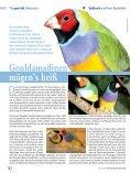 Tier & Apotheke - S&D-Verlag GmbH - Page 6
