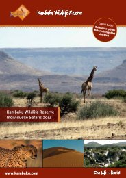 druckbares PDF - Kambaku Safari Lodge