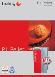 Prospekt Pelletskessel P1