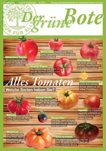 Ausgabe August / September 4/2013 - Stadtverband Essen