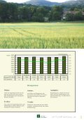 Sojabohne 2014 - Kärntner Saatbau - Seite 5