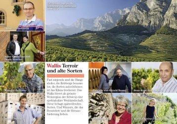Zum Text der Schweizer Illustrierten - Chanton Weine
