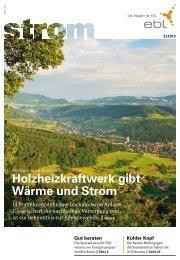 Strom Magazin 2/2013 - EBL