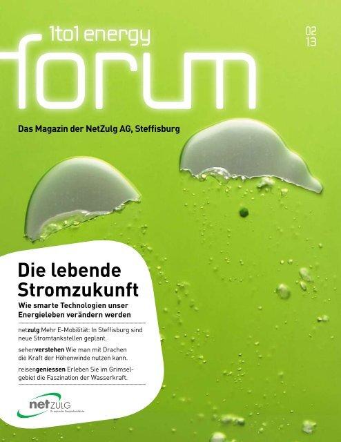 Energy Forum 2/13 - NetZulg AG