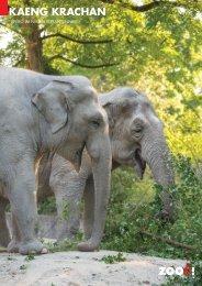 Apéroangebot im Elefantenpark [PDF, 1.00 MB] - Zoo Zürich