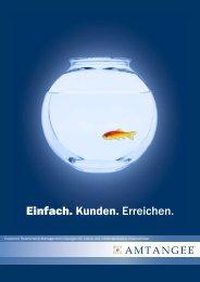 Broschüre CRM Amtangee 4.6 - IT-Consulting