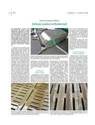 Sicheres Laufen im Rinderstall - Landwirtschaftskammer Schleswig ...