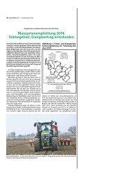 Maissortenempfehlung 2014: Stärkegehalt, Energieertrag entscheiden