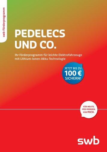 Pedelecs und Co. – Ihr Förderprogramm für leichte ... - Swb