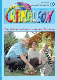 Ausgabe Nr. 3 2013 - Lebenshilfe Bördeland