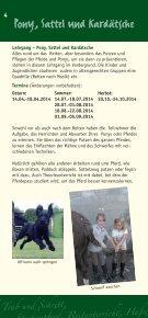 aktueller Prospekt 2014 - Reiterhof Witt - Seite 4