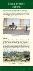 aktueller Prospekt 2014 - Reiterhof Witt - Seite 7