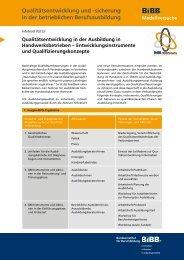 Infoblatt 03/13 - BiBB