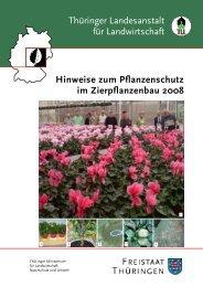 Hinweise zum Pflanzenschutz im Zierpflanzenbau 2007 - Thüringer ...