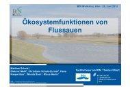 Ökosystemfunktionen von Flussauen - Bundesamt für Naturschutz