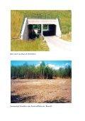 "Gruppe Maßnahme Grünbrücke ""Rouscht ... - FGSV - Page 4"
