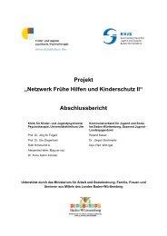 Absschlussbericht - KVJS