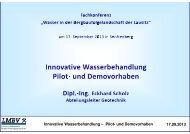 Innovative Wasserbehandlung – Pilot- und Demovorhaben ... - LMBV