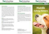 Hunde richtig füttern.indd - Mobile Tierrettung e.V.