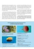 zum PDF-Download - WTW.com - Page 7